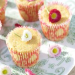 Petits gâteaux au citron bergamote (sans gluten) - Beldi lemon little cakes (gluten free) - Vanessa Romano photographe et styliste culinaire (1)