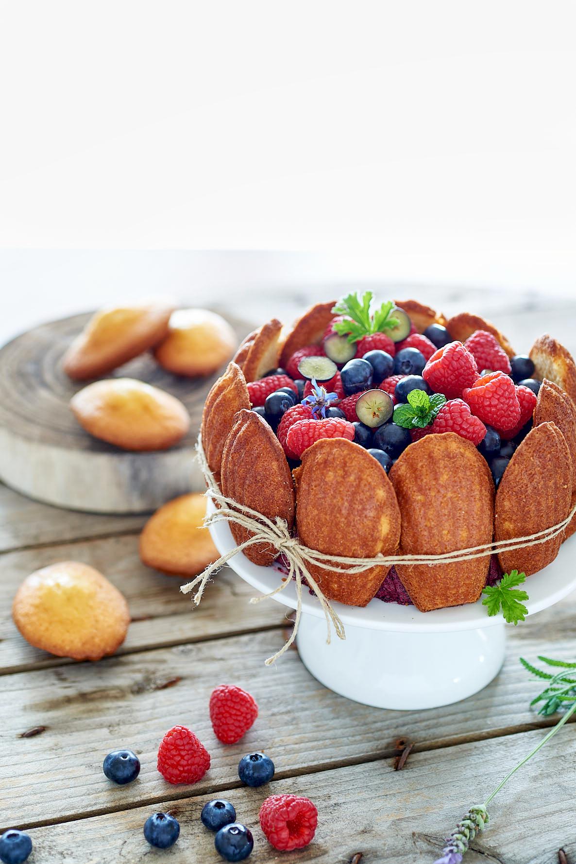 photographie culinaire de charlotte aux madeleines